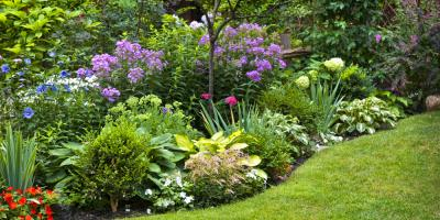The Top 3 Reasons to Hire a Landscaping Company, Lancaster, South Carolina