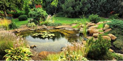 Pond Maintenance Experts Explain the Causes of Algae & How to Prevent It , Columbia, Missouri