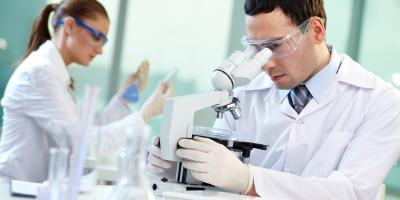 How Does Mold Testing Work?, North Las Vegas, Nevada