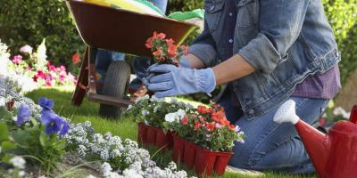 4 Must-Have Lawn & Garden Supplies, Canyon Lake, Texas