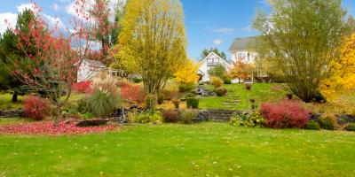 How Your Lawn Benefits From Late-Fall Fertilization, Cincinnati, Ohio