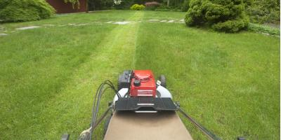 5 Benefits of Hiring a Professional Lawn Care Service, Columbia, Missouri