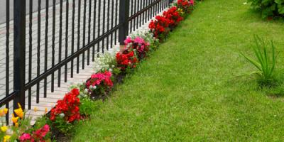 4 Lawn Care Tips to Get Your Yard Ready for Warmer Weather, Enterprise, Alabama