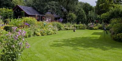 3 Lawn Care Tips to Get Your Yard Ready for Spring, Creve Coeur, Missouri