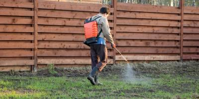 5 Reasons Why Pesticides Shouldn't Be a Part of Your Lawn Care Routine, Richfield, Minnesota