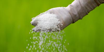 Top 5 Tips for Spring Fertilizing From a Sykesville Lawn Care Service, Eldersburg, Maryland