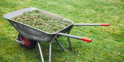 3 Reasons to Hire a Lawn Fertilization Service, Columbus, Ohio