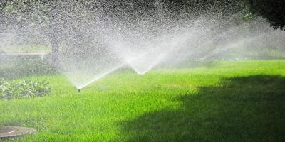 Are You Overwatering Your Lawn?, Pittsford, New York