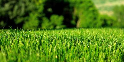 Transform Unhealthy Lawns With Lawn Mowing Tips From Pennsylvania's Grago Lawn Care , Sewickley, Pennsylvania