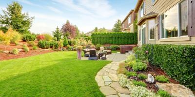 FAQ About Grubs & Lawn Care, Lexington-Fayette, Kentucky