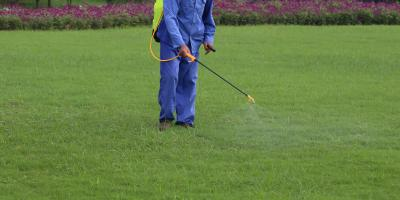 4 Reasons to Choose a Professional for Lawn Spraying, Enterprise, Alabama