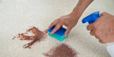 3 Reasons Why Your Carpet Needs Help, Lexington-Fayette Central, Kentucky
