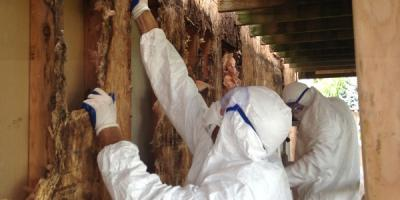 Lexington's Mold Removal Experts Share Tips for Mold Awareness Month, Lexington-Fayette Central, Kentucky