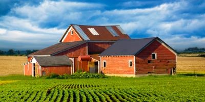 Why You Need Farm Insurance Coverage for the Rainy Season, Licking, Missouri