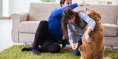 5 Ways to Keep Fleas Out of Your Home, Lincoln, Nebraska