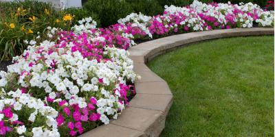 Landscape Design Experts Share 3 Ways to Improve Your Curb Appeal, Lincoln, Nebraska