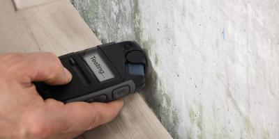 3 Reasons to Schedule a Mold Inspection Before Buying a Home, Omaha, Nebraska