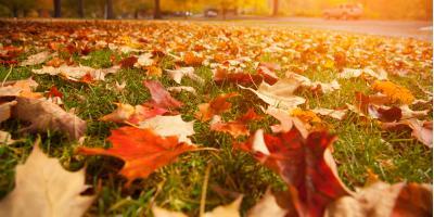 3 Tips for Preparing Your Lawn for Fall, Lincoln, Nebraska