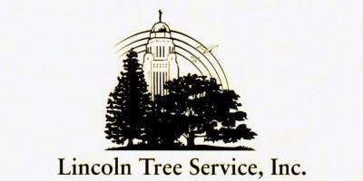 """Why We """"Clean"""" Trees, Lincoln, Nebraska"""