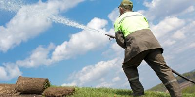 Your Guide to Watering New Sod, Hill, Arkansas