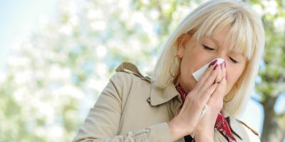Allergy Immunology Expert's Guide to What Causes Allergies, North Hempstead, New York