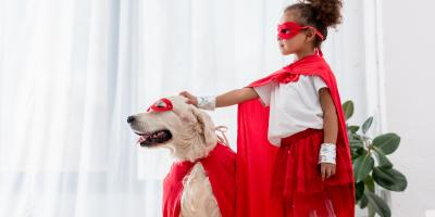 3 Tips for Safely Dressing Up Your Pet This Halloween, Miami, Ohio