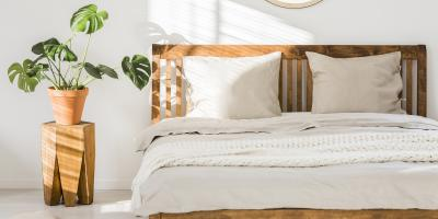 4 Signs You Have Bedbugs, Maineville, Ohio
