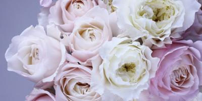 Sympathy Flowers from CitiFloral: When Words Aren't Enough, Manhattan, New York