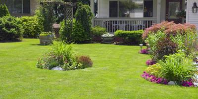 3 Tips to Follow While Landscaping With a Septic System, Milledgeville, Georgia