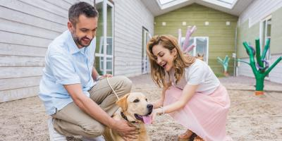 A Guide to Your First Pet Adoption, Clarksville, Maryland