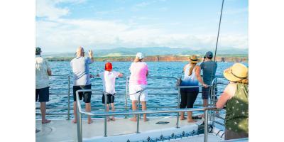 5 Essential Etiquette Tips for Your First Sea Tour, Kekaha-Waimea, Hawaii