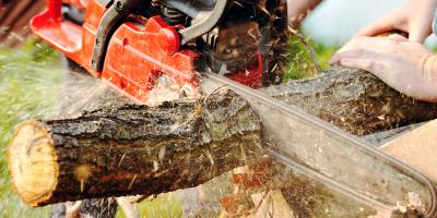 5 Tips for Using a Chainsaw to Cut Firewood, Middlefield, Ohio