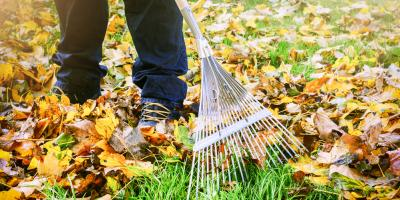 How Landscaping Professionals Make Your Yard Fall-Ready, Grant, Nebraska