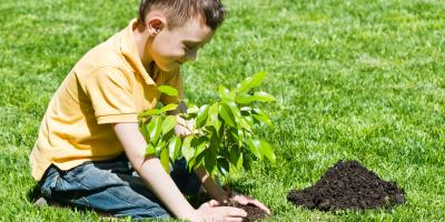 3 Pieces of Equipment to Rent for Your Spring Lawn Care, Lexington-Fayette Central, Kentucky