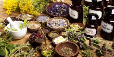 How to Use Aromatherapy With Pets, Minneapolis, Minnesota