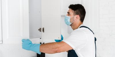 A Guide to Heat Thermal Pest Control, San Fernando Valley, California