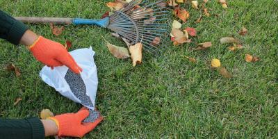 Should You Fertilize Your Lawn Before Winter?, Bolivar, Missouri