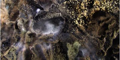 Vermont's Mold Remediation Experts Answer 4 FAQs About the Fungus, Williston, Vermont