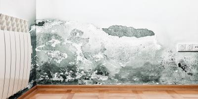 A Guide to Successfully Dealing With Water Damage, Foley, Alabama
