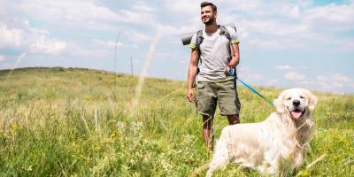 What Dog Owners Should Know About Lyme Disease, ,