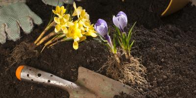 3 Benefits of Using Topsoil in Your Garden, Moscow Mills, Missouri
