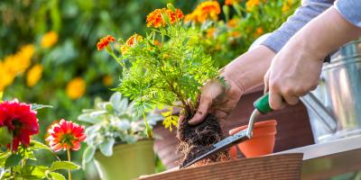 5 Steps to Prepare Your Yard for Spring, Moscow Mills, Missouri