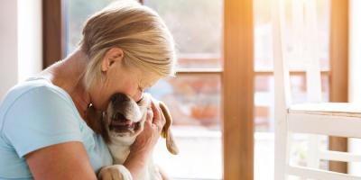 3 Tips to Help Your Dog Adjust to a New Home, Ewa, Hawaii