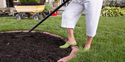 When Should You Put Mulch in Your Yard or Garden? , Arcadia, New York