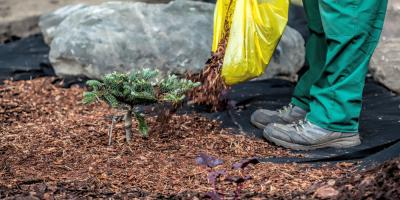 4 Ways Hamilton's Top Landscaping Team Can Prep Your Yard for Winter, Hamilton, Ohio