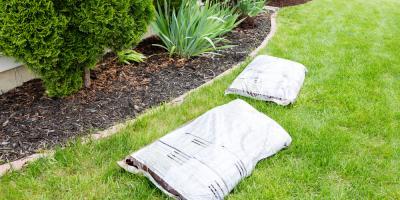 Top 3 Reasons to Mulch Your Garden, Paducah, Kentucky