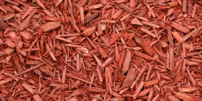 How Often Should You Put Down Mulch?, Asheboro, North Carolina