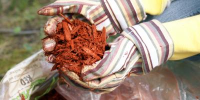 3 Benefits of Mulching, Fort Worth, Texas