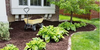 5 Types of Mulch for Your Backyard , Long Valley, New Jersey