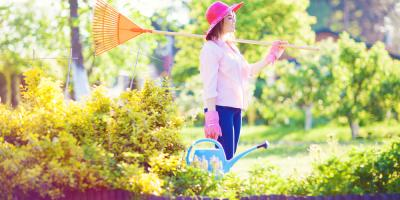 A Brief Guide to Lawn Maintenance for Beginners, Eldersburg, Maryland